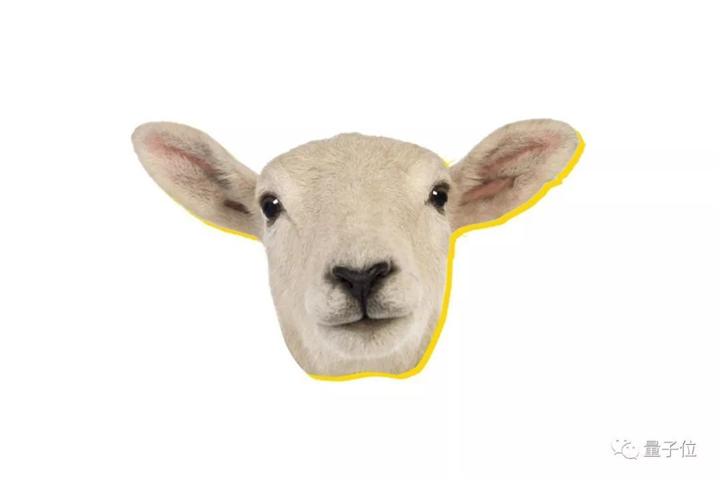 动物面部识别技术哪个强?奶牛鸡猪狗绵羊